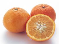 オレンジ(ネーブル)(バレンシア)