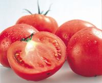 トマト(4〜5玉入)